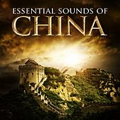 Play & Download Essential Sounds of China by Various Artists | Napster