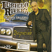 Play & Download Despreciado by Lupillo Rivera | Napster