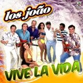 Play & Download Vive la Vida by Los Joao | Napster