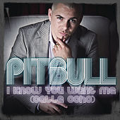 I Know You Want Me (Calle Ocho) by Pitbull