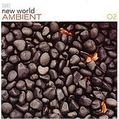 Play & Download New World Ambient 02 by Various Artists | Napster