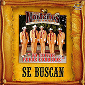 Play & Download 20 Exitos Puros Corridos by Los Nortenos De Cosala | Napster
