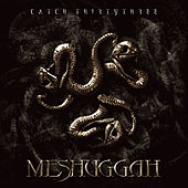 Catch ThirtyThree by Meshuggah