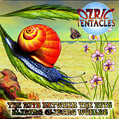 Play & Download The Bits Between The Bits/Sliding Gliding Worlds by Ozric Tentacles | Napster