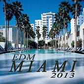 Play & Download Edm Miami 2013 (The Best Electro House, Electronic Dance, EDM, Techno, House & Progressive Trance) by Various Artists | Napster