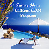 Play & Download Future Ibiza Chillout Edm Program (The Best Electro House, Electronic Dance, EDM, Techno, House & Progressive Trance) by Various Artists | Napster