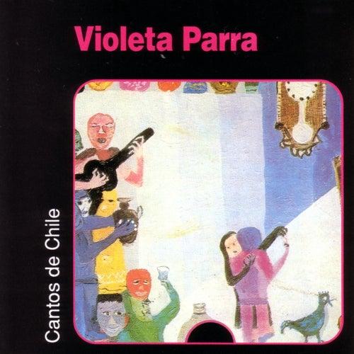 Play & Download Cantos de Chile by Violeta Parra | Napster
