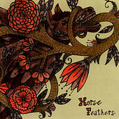 Play & Download Words Are Dead by Horse Feathers | Napster