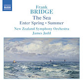 Play & Download BRIDGE: The Sea / Enter Spring / Summer by New Zealand Symphony Orchestra | Napster