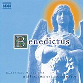 BENEDICTUS - CLASSICAL MUSIC FOR REFLECTION AND MEDITATION von Various Artists
