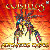 Play & Download Autenticos Exitos by Banda Cuisillos | Napster