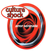 Amor Serenade by Culture Shock (Electronic)