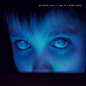 Play & Download Fear of a Blank Planet by Porcupine Tree | Napster
