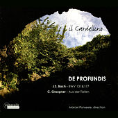 Play & Download De Profundis by Marcel Ponseele | Napster