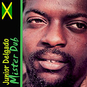 Play & Download Mister Dub by Junior Delgado | Napster