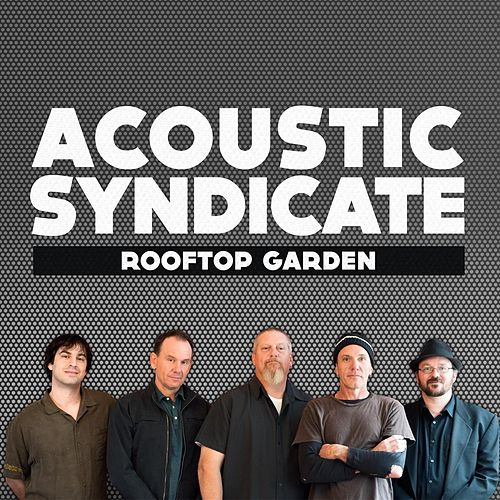 Play & Download Rooftop Garden by Acoustic Syndicate | Napster