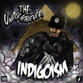 Play & Download Indigoism by The Underachievers | Napster