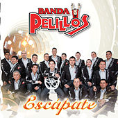 Play & Download Escapate by Banda Pelillos | Napster