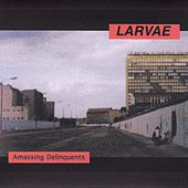 Play & Download Amassing Delinquents by Larvae | Napster