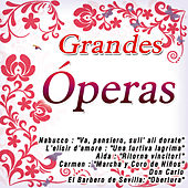 Play & Download Grandes Óperas by The Royal Chorus Orchestra | Napster