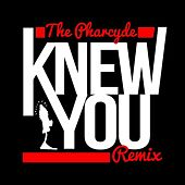 Knew You (Simeon Viltz Remix) by The Pharcyde