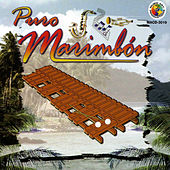 Puro Marimbon by Various Artists