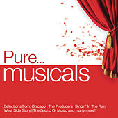 Pure... Musicals von Various Artists