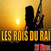 Les Rois du Raï, 28 titres by Various Artists
