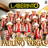 Play & Download Tributo a Paulino Vargas by Laberinto | Napster