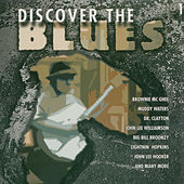 Play & Download Discover The Blues, Vol. 1 by Various Artists | Napster