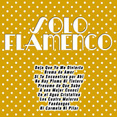 Play & Download Solo Flamenco by Various Artists | Napster
