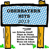 Play & Download Oberbayern Hits 2013 by Various Artists | Napster