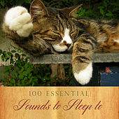 Play & Download 100 Essential Sounds to Sleep To by Various Artists | Napster