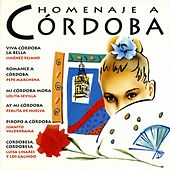 Play & Download Homenaje a Córdoba by Various Artists | Napster