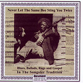 Never Let The Same Bee Sting You Twice - Blues, Ballads, Rags & Gospel In The Songster Tradition by Various Artists