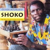 Shoko by Oliver Mtukudzi