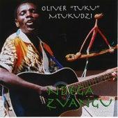 Ndega Zvangu by Oliver Mtukudzi