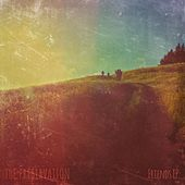 Friends EP by The Preservation