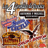 Los 4 Grandes De Oaxaca by Various Artists