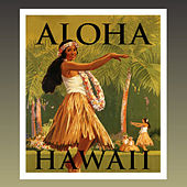 Aloha Hawaii - Hawaiian Guitar by Murdo Mcrae