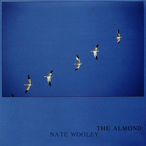 The Almond by Nate Wooley