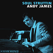Soul Struttin by Andy James