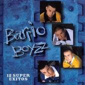 12 Super Exitos by The Barrio Boyzz