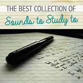 Play & Download The Best Collection of Sounds to Study To by Various Artists | Napster