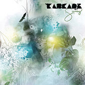 Sorry by Kaskade