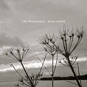 Play & Download The Promenade by Niall Byrne | Napster
