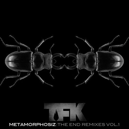 Metamorphosiz: The End Remixes, Vol. 1 by Thousand Foot Krutch