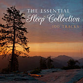 Play & Download The Essential Sleep Collection by Various Artists | Napster