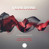 The Share of Sadness by David Divine