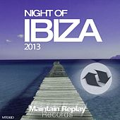 Night of Ibiza 2013 - EP by Various Artists